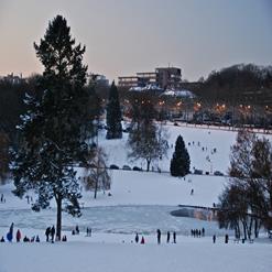 Woluwe Park