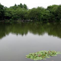 Lesser Yingzhou Isle
