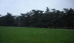 Parc de Parilly