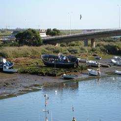 Tavira Boat Tours