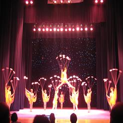 Tianqiao Acrobatic Theater