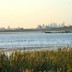 Tambourine Bay Reserve