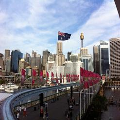The Pyrmont Bridge